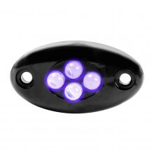 LED ACCENT LIGHTS | 87431